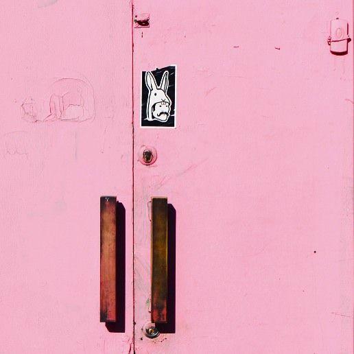 Minimal Pink Door Santiago de Chile shoot by@laciudadalinsta