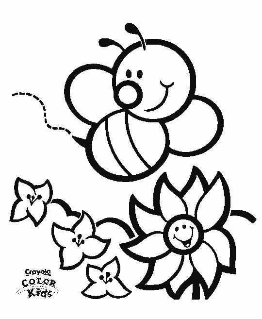 As 9 melhores imagens em Desenhos de borboletas no