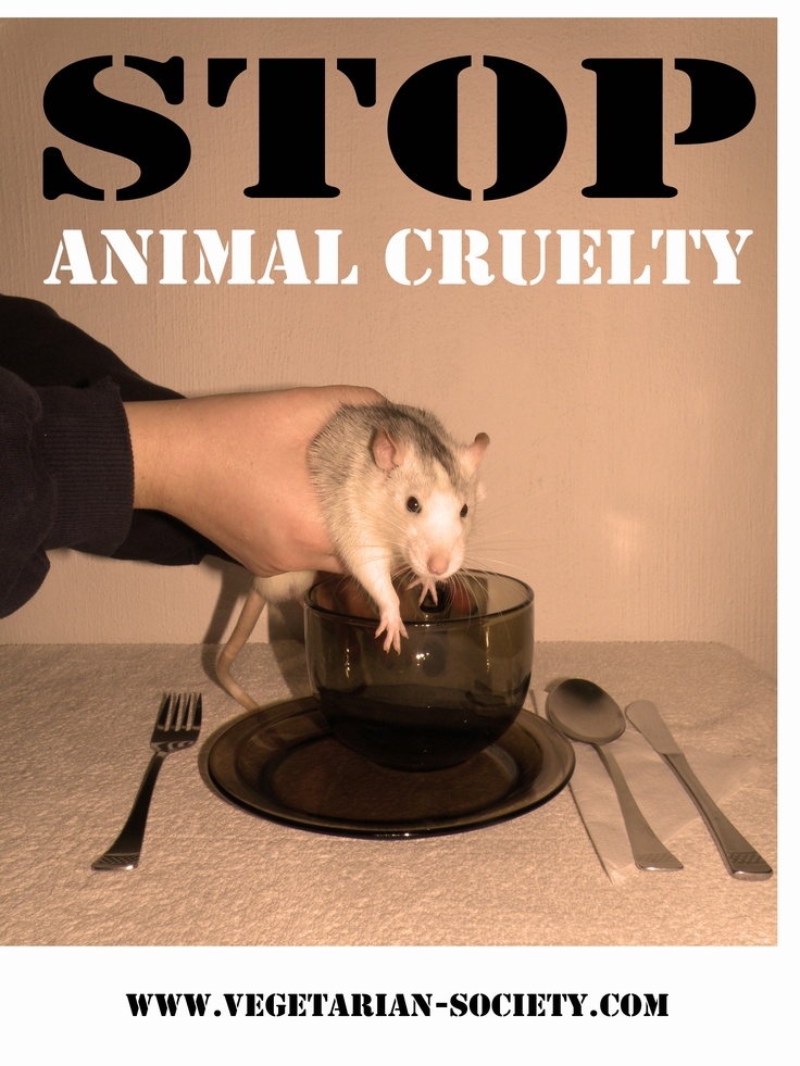 animal abuse posters ideas - photo #19