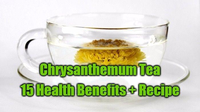 15+Health+Benefits+of+Chrysanthemum+Tea+++Recipe