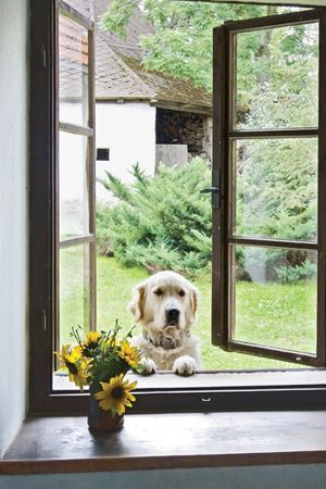 ~Can I come in now?
