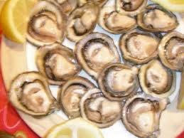 comida chilena - ostras chilenas
