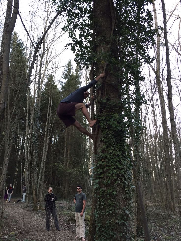 Photo du cours de mercredi passé !  #movnat #movnatneuchatel #etrefortpouretreutile #fitness #movnataffiliate #ShareYourNature #fitness #neuchatel #climbing