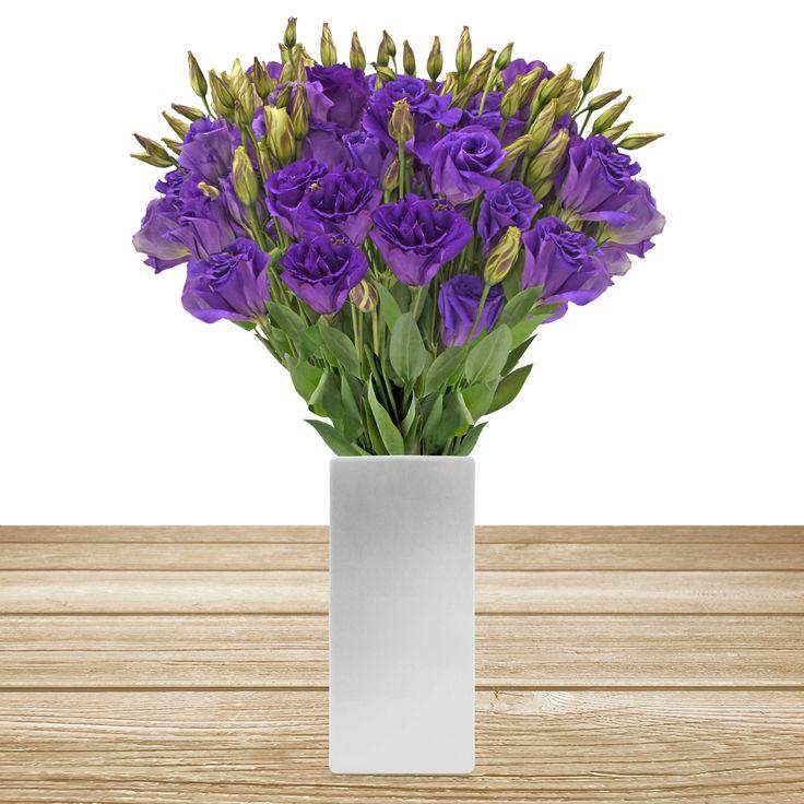 PURPLE LISIANTHUS #roses,#pinkflowers,#gardening,#plants,#love,#bridal,#holidays,#anniversarygifts,#gift,#partyideas,#partydecorations,#fasshion,#christmas,#homedecor,#events,#giftsforher,#cooking,#fasshion,#style,#shopping,#onlineshopping,#online,#disney,#disneyland,#oprah,#usa,#costco,#sams,#art,#artist,#miami,#texas,#washingtondc,#newyork,#atlanta,#dogs,#family,#unitedstates,#babies,#lasvegas,#orlando,#chicago,#sandiego,#california,#sanfrancisco,#houston,#design,#losangeles,#fall,#summer,