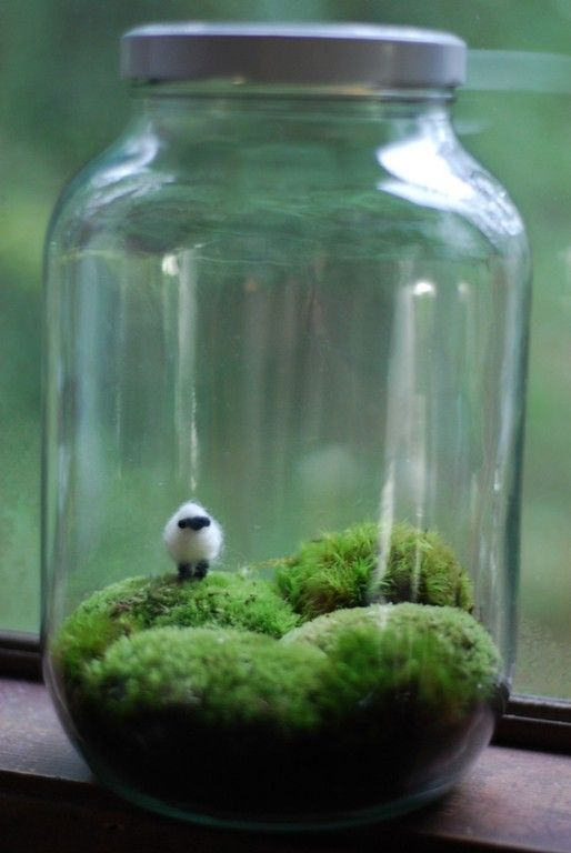 "irish landscape with wee wool sheep. needlefelted sheep. variety of mosses. 12"" tall. sheep is less than an inch big and has wire stakes. terrarium. $42.00 ... I want to add a little rose and make it the planet of the Little Prince."