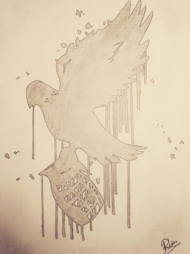Dove and grenade