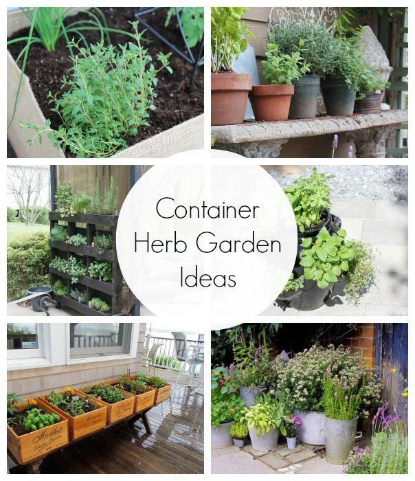 Patio Herb Garden Idea: Container Herb Garden Ideas