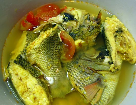 sup ikan parende wakatobi