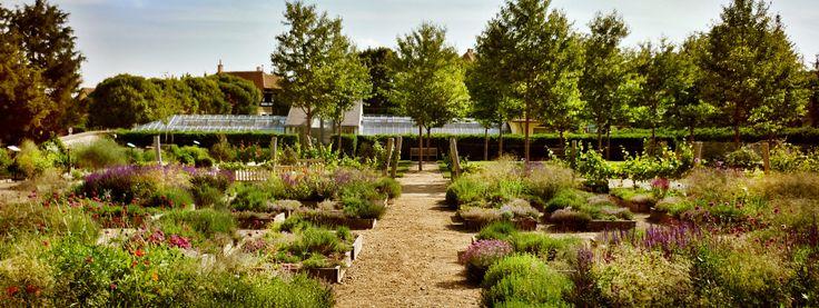 bylinokva zahrada valtice