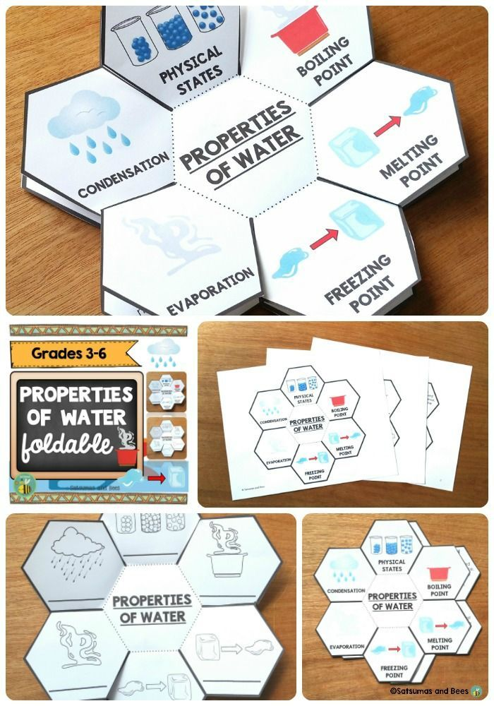 Fun foldable to review the main properties of water. This resource will fit perfectly in interactive science notebooks or lapbooks. It includes differentiated versions to meet the needs of ALL your students.