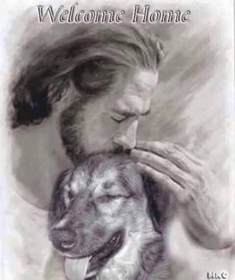 All dogs go to Heaven... it wouldnt be Heaven without them ♥ More Dogs, Inspiration, Rainbows Bridges, Pet Loss, Welcome Home, German Shepherd, Homes, Animal, Heavens Welcome home... Pic of dog with Jesus Home, over the Rainbow Bridge with unending love. ♥ pet loss I believe all animals go to heaven. Check more at http://blog.blackboxs.ru/category/dogs/