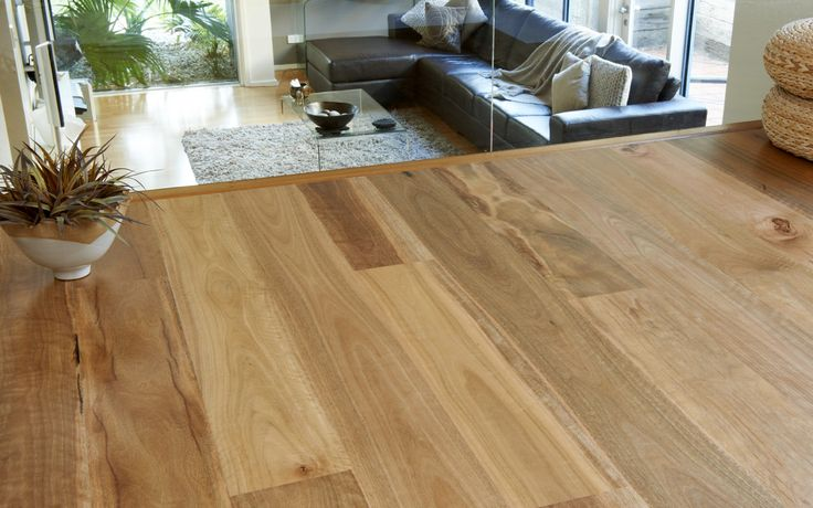 Spotted Gum - http://evolvedluxuryfloors.com.au/product/timber-floors/spotted-gum/
