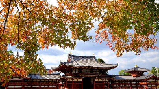 Byodoin Temples at fall.