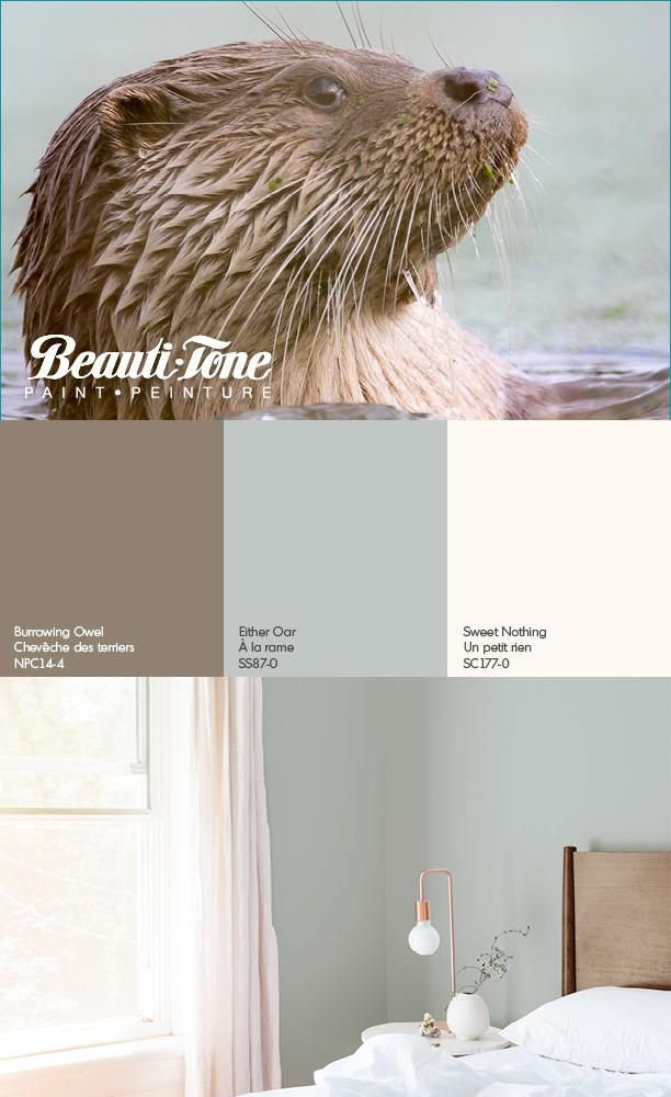 A New Refreshing Palette From Beauti Tone Coating Your Space In Luxe Calm Basement Paint Colors Master Bedroom Color Schemes Paint Colors For Living Room #soothing #colours #for #living #room