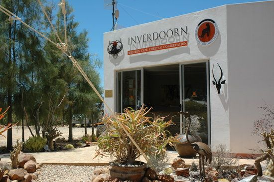 Book your tickets online for Inverdoorn Game Reserve Safaris, Cape Town Central: See 254 reviews, articles, and 292 photos of Inverdoorn Game Reserve Safaris, ranked No.42 on TripAdvisor among 220 attractions in Cape Town Central.