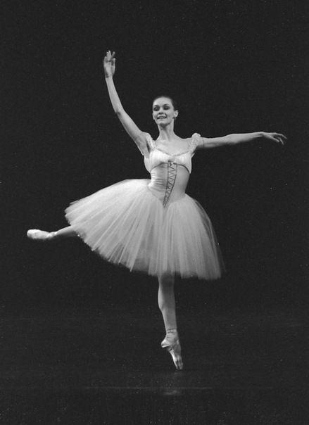 балерина французова елена михайловна фото факты открывают для