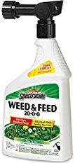 Weed and feed with Scotts and Sta Green Fertilizer. When and how to apply weed and feed for healthy, green lawn. No dandelions or crabgrass