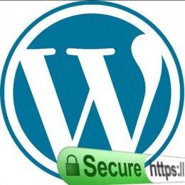 Securing WordPress With TLS Encryption
