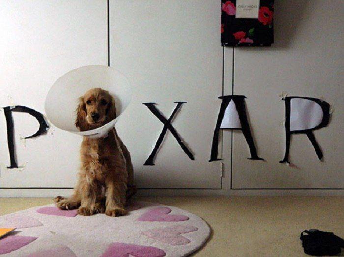 В разработку был запущен новый логотип для студии Pixar.