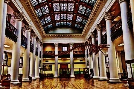 Paleontology Natural History Museum