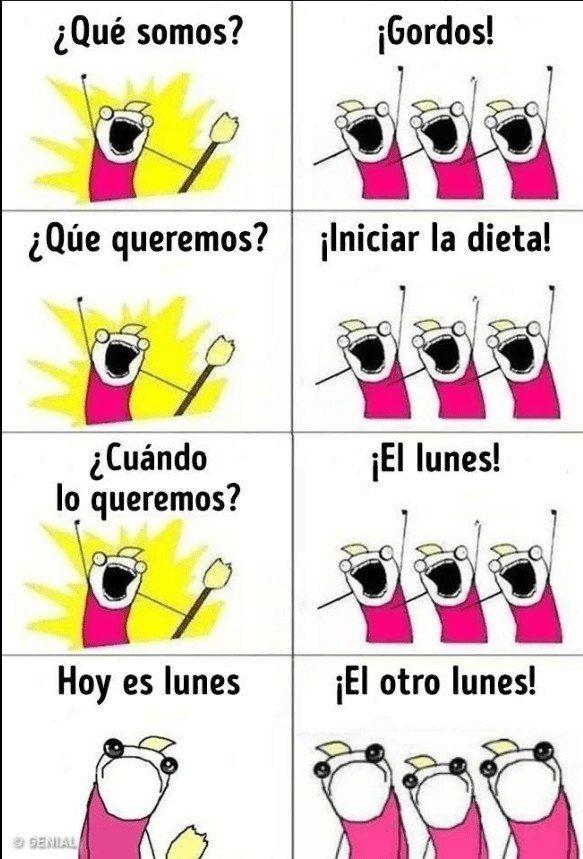 Los Gordos Y Las Dietas Funny Diet Memes Monday Humor Diet Jokes
