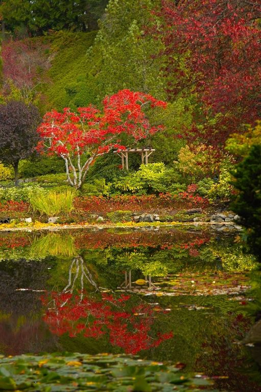 Garden Design Victoria Bc 297 best butchart gardens - the best gardens! images on pinterest
