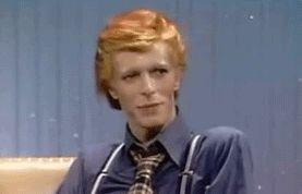 New trending GIF on Giphy. david bowie bitch please sensible chuckle. Follow Me CooliPhone6Case on Twitter Facebook Google Instagram LinkedIn Blogger Tumblr Youtube