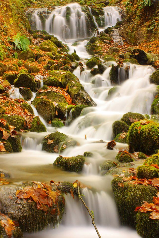Hidden paradise in autumn  Seven Lakes National Park, Bolu/TURKEY. Saklı cennette sonbahar. Yedigöller Milli Parkı, Bolu. http://fotogaleri.ntvmsnbc.com/sakli-cennette-sonbahar.html?position=0
