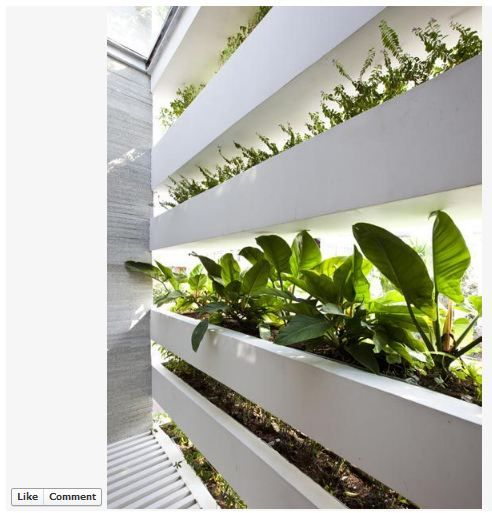 Here is an interior view of the house with the planter wall: