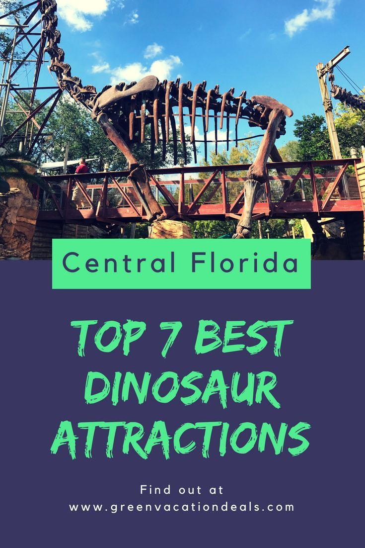 265 Best Theme Parks Images On Pinterest Shanghai Et Ticket Legoland Discovery Center Weekday 7 Dinosaur Attractions In Central Florida Animal Kingdom At Disney World
