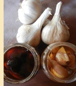 all star pics: How To Make Garlic Honey To Fight Winter Illness : super easy to make and ready almost immediately to counter sore throats, colds, the flu, lung congestion and sinus problems.