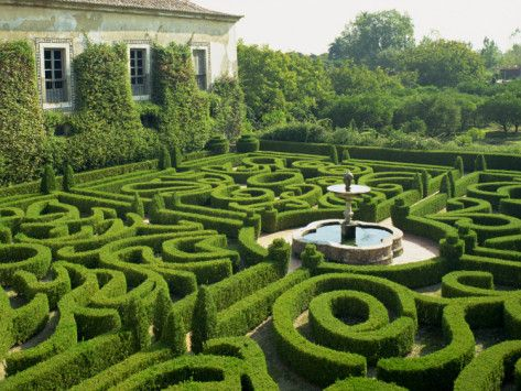 Garden Maze, Portugal, Europe Photographic Print by Westwater Nedra at AllPosters.com