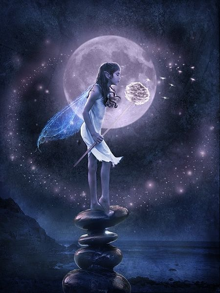Remember to always plant the seeds for all of your wishes to come true.  - Jasmeine Moonsong