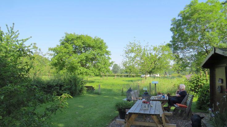 2016-06-05 Luttenberg, Erve Krukkert met mooie hoogstamfruitbomen