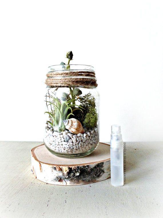 SALE Milk Bottle Terrarium / Live Plants / Vintage by DoodleBirdie