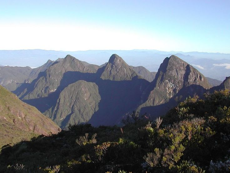 Marojejy National Park is a national park in the Sava Region of northeastern Madagascar.