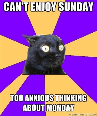 Anxiety Cat: Can't enjoy Sunday:  Too anxious thinking about Monday.