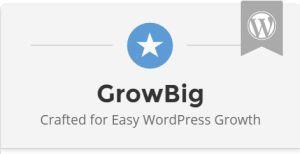 Hai bisogno di creare più siti web e gestirli da un unico account (cPanel)? Scegli GrowBig di Siteground Hosting SSD