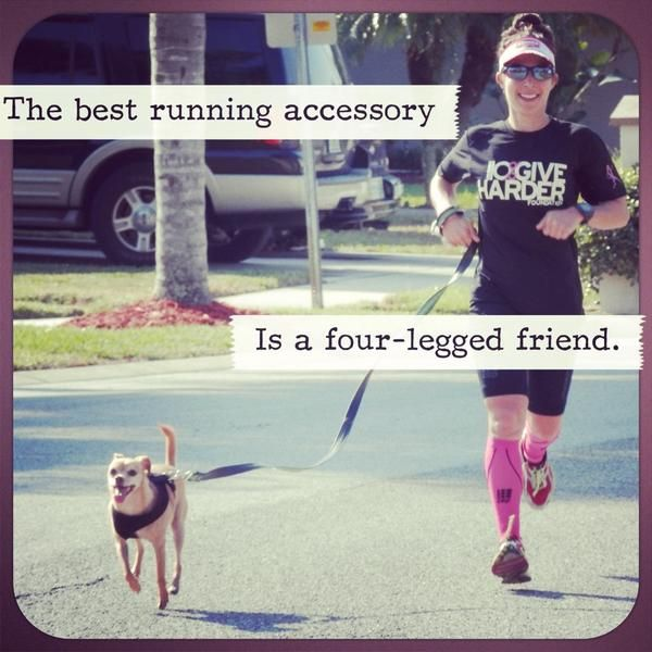 Repin if you love #running with your #dog.     Thanks to @Trimarnicoach for sharing this with us on Twitter.
