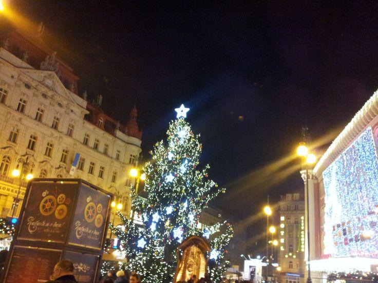 Vánoční strom na Náměstí Republiky v Praze. Christmas tree at the Republic Square in Prague (CZ). 2013