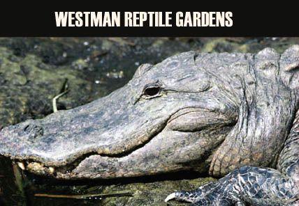 Westman Reptile Gardens in Brandon, Manitoba