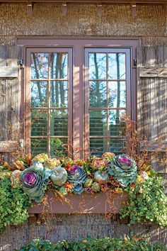 Transitional Window Box - Fabulous Fall Decorating Ideas - Southernliving. Plan ahead for plantings that will transition through the holidays with a few additions. Start with ornamental cabbage, bittersweet, pumpkins, dried hydrangeas, artichokes, and ivy, then add ingilded branches and berries to suit the season.  Tip: To withstand October's lower temps, plant window boxes with cold-hardy cabbages and ivy. Add the largest items first
