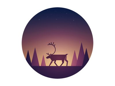 Reindeer at night