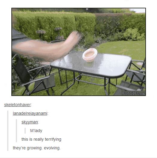 OH MY GOSH I SAW THIS GIF BEFORE AND THE FIRST COMMENT MAKES ME THINK OF HICCUP.