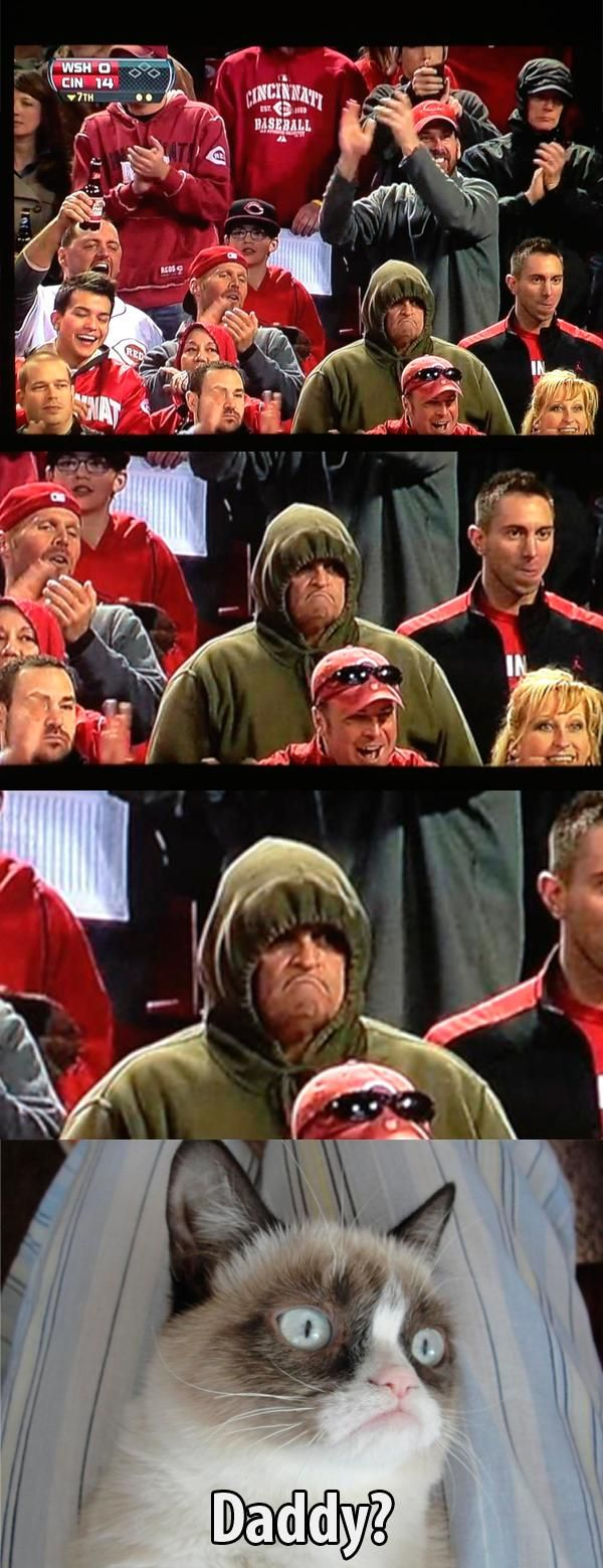 Grumpy cat finds his dad.... At a Reds game yay boy!!!