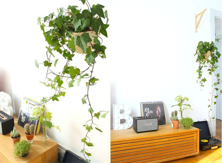 Décoration de salon folk.Suspension pour plante en panier avec du lierre. Avec lecteur vinyles Crosley. / Room Makeover for folk.Suspension basket with ivy plant. Crosley player with vinyl.