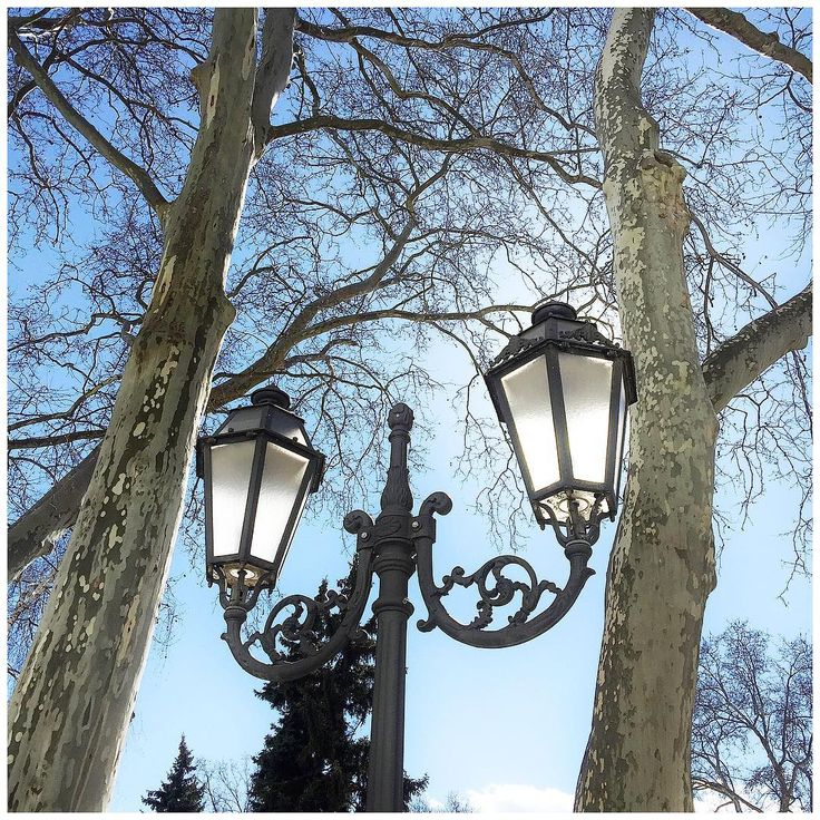 Beauty of my city! We all should look up at the sky sometimes! #Odessa #Ukraine  Красота вокруг! Иногда надо почаще себя заставлять поднимать глаза наверх! Обожаю #платаны, ну и изящные фонари, эсессно... А если все это приправлено солнечным небом, то ощущение #счастья обеспечено!