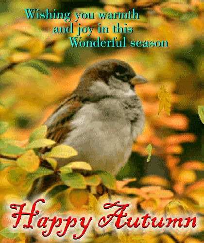 https://i.pinimg.com/736x/a3/e8/0f/a3e80f791767e55779371ae45811b4d2--fall-poems-happy-autumn.jpg