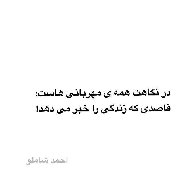 احمد شاملو ●  در نگاهت همه ی مهربانی هاست:  قاصدی که زندگی را خبر می دهد #احمدشاملو