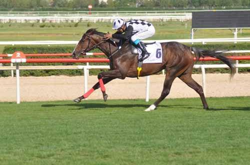 TJK Dürbüne Takılanlar 3… Geçtiğimiz hafta koşulan önemli #TJK at yarışlarının analizleri ve dürbüne takılan takibe değer atlar hakkında yaptığımız değerlendirmelerin 3. bölümü şu şekildedir: 19 Temmuz Cumartesi günü TJK Ankara 75.Yıl Hipodromu'nda günün en önemli mücadelesi altılı ganyanın dördüncü ayağında yapılan 2 yaşlı İngiliz…  http://ganyan.info.tr/tjk-haftanin-analizi-3/